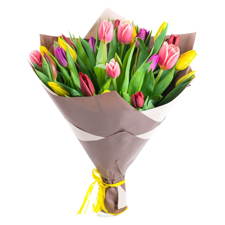 assorted tulips
